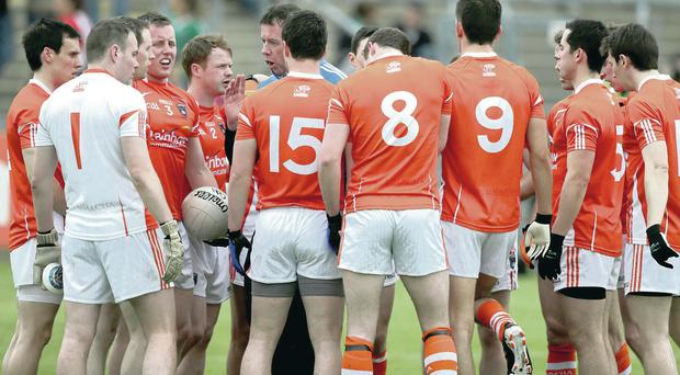 On the up: Armagh after defeat by Cavan last year