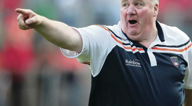 Well placed: Paul Grimley believes Armagh have a bright future as they go into their Ulster semi-final replay