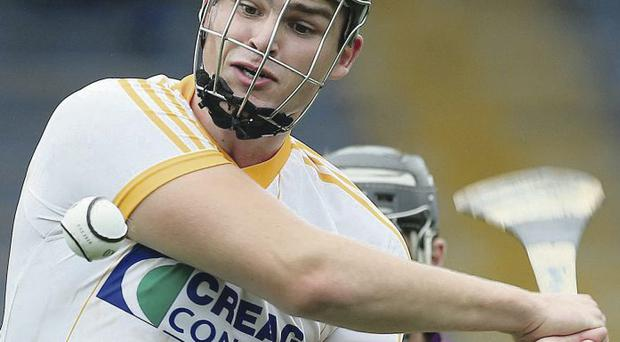 Bring it on: Antrim's Matthew Donnelly is relishing All-Ireland clash