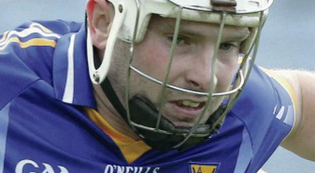 Doubled up: Andy O'Brien netted twice for Wicklow