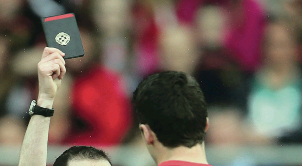 Black mark: Referee David Coldrick sparked a fierce reaction when he dismissed Tyrone goalkeeper Niall Morgan but failed to take similar action against Down's Conor Maginn