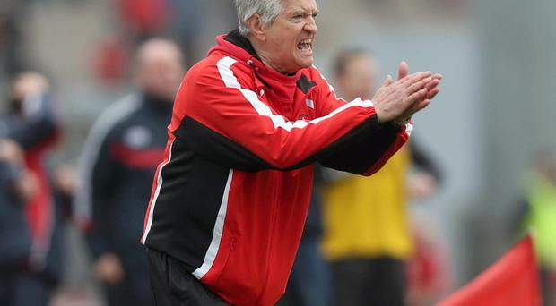 To be applauded: Brian McIver is confident Derry are on right track