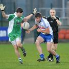 Guilty: Thomas Connolly (white shirt) must serve two-year ban for using banned substance