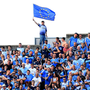 Flying the flag: Dublin fans are well used to seeing their heroes triumph at GAA headquarters