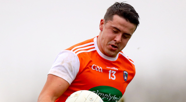 Key man: Stefan Campbell was to the fore for Armagh