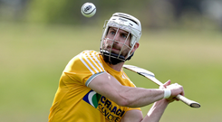 Ace in pack: Neil McManus will be out to inspire Antrim to victory over Westmeath in Dunloy on Saturday