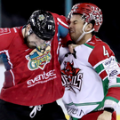 Clash: Matt Pelech and Cardiff Devils' Mark Louis square up