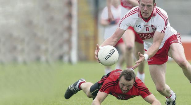 High hopes: Patsy Bradley is important part of Derry boss Brian McIver's plans