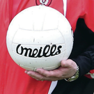 A GAA match in Derry ended with a melee on Saturday.