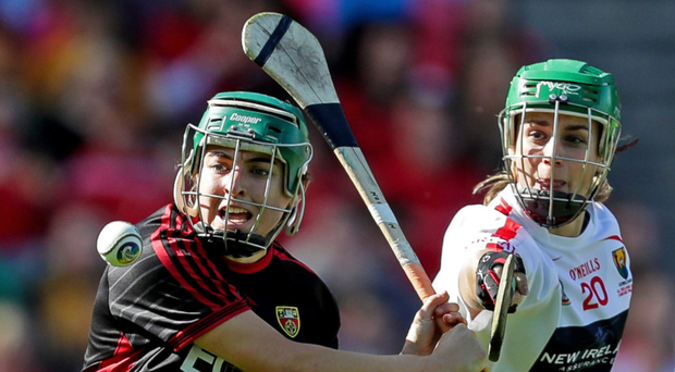 Goal-den strike: Niamh Mallon's late scoring blast rescued Down against Tipperary and bolstered their All-Ireland title hopes