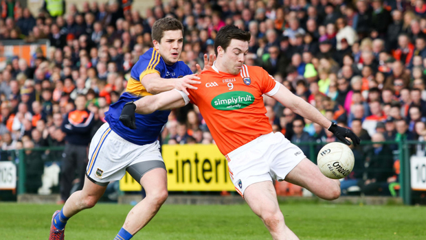 Quality: Armagh's Aidan Forker (right) can deploy his vast experience to good effect against Cavan in tonight's opening Division Two clash at the Athletic Grounds