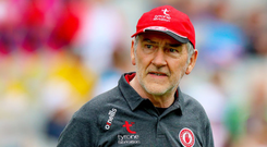 Aiming high: Mickey Harte would love to clinch a fourth All-Ireland crown with Tyrone