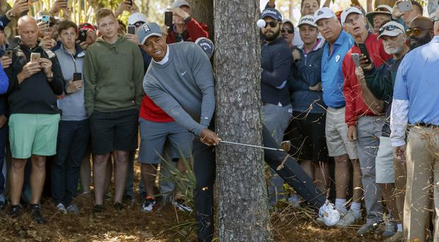 Tiger Woods finds trouble near a tree