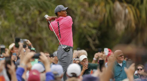Tiger Woods is enjoying his best week in years at the Valspar Championship