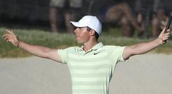 Rory McIlroy celebrates after making a birdie on the 18th green (AP Photo/Phelan M. Ebenhack)