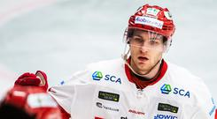 New face: Rickard Palmberg has joined the Belfast Giants after an unhappy spell with Czech side Berani Zlin