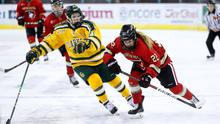 College stars: Clarkson and Northeastern go head-to-head at the SSE Arena in last year's inaugural Friendship Series