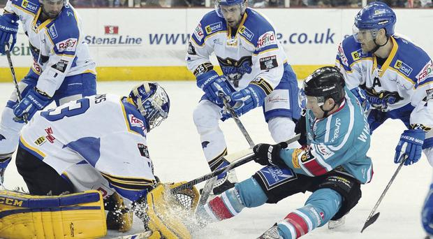 Belfast Giant Dustin Whitecotton sees his shot blocked by Hull netminder Ben Bowns