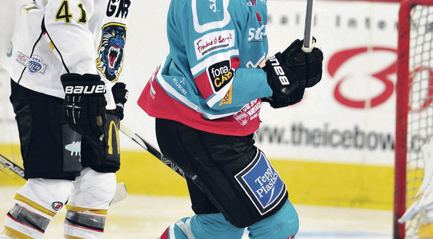 Feeling greedy: Belfast Giants forward Jeffrey Szwez