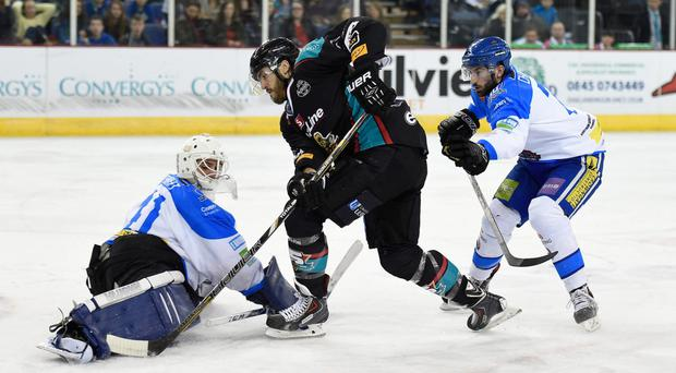 Dancing on ice: Kevin Westgarth hit a hat-trick for the Giants in their 5-2 victory at the Edinburgh Capitals