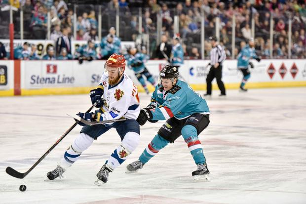 Frozen out: Belfast Giants forward Craig Peacock is thwarted in his chase to win the puck against the Edinburgh Capitals