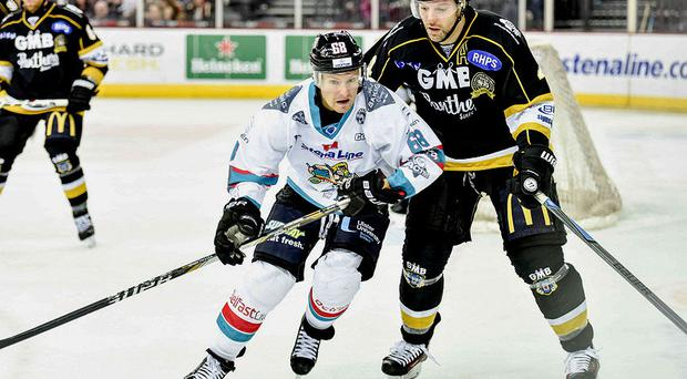 Top form: Star forward Chris Higgins can fire the Giants' title charge, says player-coach Derrick Walser