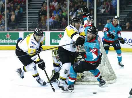 Brace: Giants' David Rutherford bagged a double in defeat at Flyers