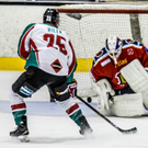 On target: Blair Riley scores for the Belfast Giants in their 6-3 win at Edinburgh Capitals