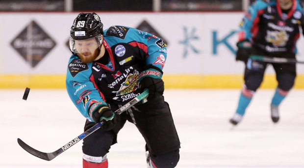 Ice cool finisher: Jonathan Boxill was on target for the Belfast Giants last night in their 8-3 demolition of Edinburgh Capitals
