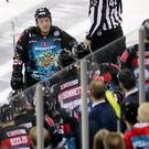 Wise head: Belfast Giants star Brendan Connolly knows Cardiff Devils will be seeking revenge