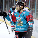 Goal fest: Belfast Giants' Steve Saviano celebrates scoring one of his four goals against Manchester Storm yesterday