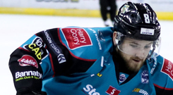 Belfast Giants winger Lewis Hook in action against the Cardiff Devils (William Cherry/PressEye)