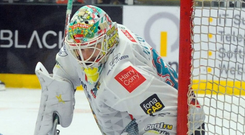 Back to form: Shane Owen, wearing Andrew Dickson's No.35 jersey, made 41 saves for the Belfast Giants on Sunday