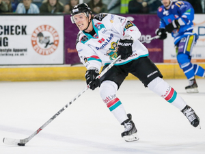 On target: Mike Forney netted in the Belfast Giants' defeat