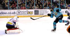 Form man: Belfast Giants forward Elgin Pearce finds the net against the Coventry Blaze