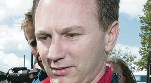Seeing red: Team chief Christian Horner has defended Red Bull