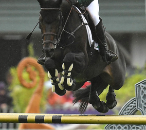 Showjumping in Ireland continues under strict Covid-19 guidelines