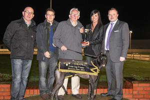 Winning View: Dessie Gilroy, owner of Caledonia Smooth Gold Cup winner Divis View, accepts the £5,000 trophy from Annemarie McDonagh, Territory Manager Tennents NI. Also pictured are handler Joe Taggart, breeder Erwin Birkmyre and John Connor, Drumbo Park Racing Manager