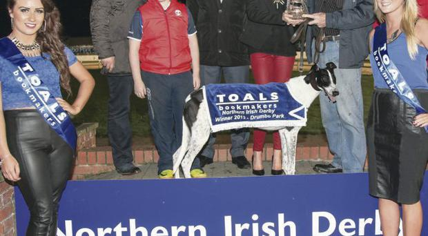 Fantasy reality: Lauren Toal presents the trophy to trainer John 'Ginger' McGee after Jaxx On Fantasy broke the track record when landing the Toals Bookmakers Northern Irish Derby at Drumbo