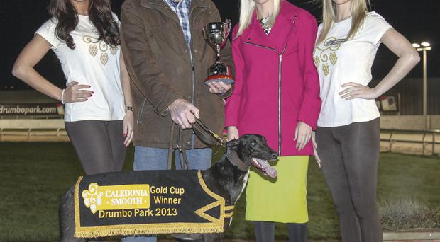 Caledonia Gold Cup winner Work Me Lord and trainer John McGee with Sarah Shimmons, Marketing Manager of sponsor Tennents NI, Laurina Kennedy (left) and Sarah Jayne McKenzie