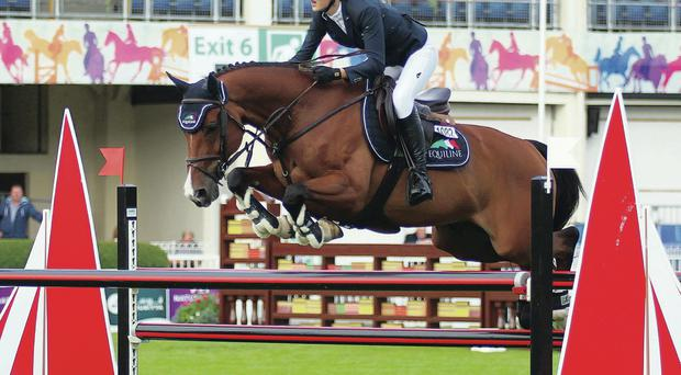 Winning ride: Sophie Dalm from Belfast, on her way to the only clear round of the Young Riders class at the Dublin Horse Show