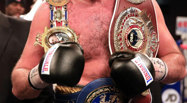 Fighting talk: Tyson Fury believes Wladimir Klitschko is too afraid to step into the ring with him