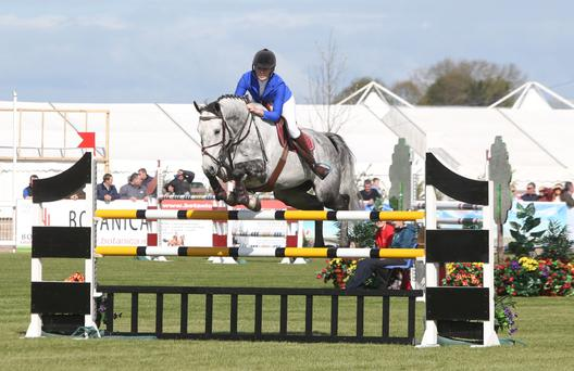 Up and over: Quotum and Melanie Davidson in the Dengie 6/7 Year Old Championship at the Balmoral Show at the Maze