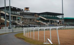 Ready for the off: Newcastle's Gosforth Park racecourse