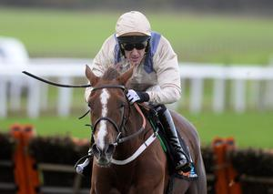Injury blow: Tony McCoy will be out of action for a fortnight