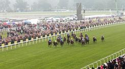 Provided the dreaded 'bounce factor' does not take effect, David Simcock's filly should prove hard to beat (stock photo)