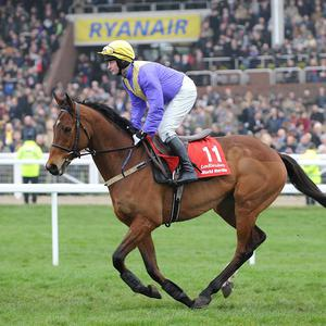 So Young landed the Red Mills Trial Hurdle by six lengths