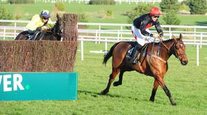 Le Vent D'Antan asserts after missing the final fence