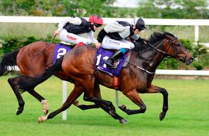 High and mighty: Confidence High ridden by Billy Lee (right) wins the Leopardstown Handicap from Dark Pine
