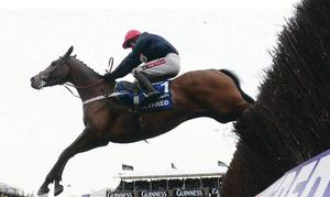 Barry Geraghty and Bobs Worth clear the last fence en route to winning the Gold Cup last year